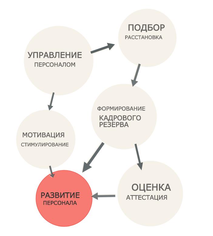 фото области кадровой политики